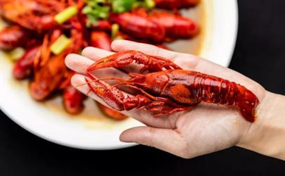 小龙虾买虾尾好还是整虾好