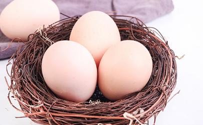 扫码送鸡蛋是什么套路