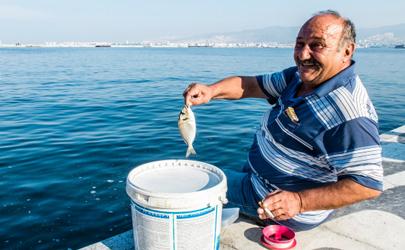 花露水钓鱼什么季节效果好