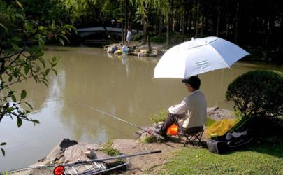 暴雨后水浑好钓鱼吗