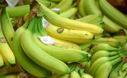 非常粗大的香蕉是不是激素