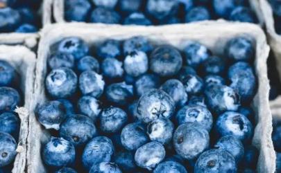 蓝莓为什么不能吃太多