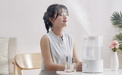 加湿器能代替补水仪吗