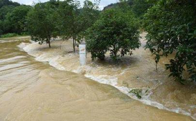 2020洪水灾害有哪些省