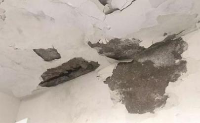 屋顶漏水墙壁发霉怎么处理