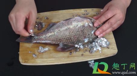 如何用家里的东西刮鱼鳞3