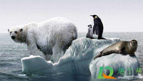 全球变暖还能撑多久2