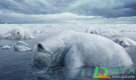 全球变暖还能撑多久1