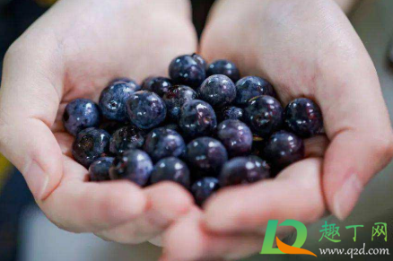 蓝莓皮能不能吃下去1