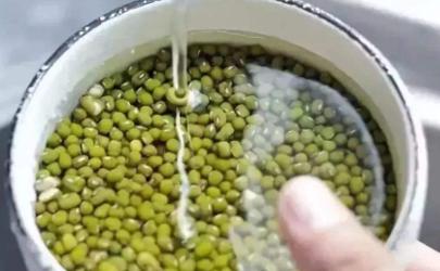 煮绿豆冷水还是热水下锅