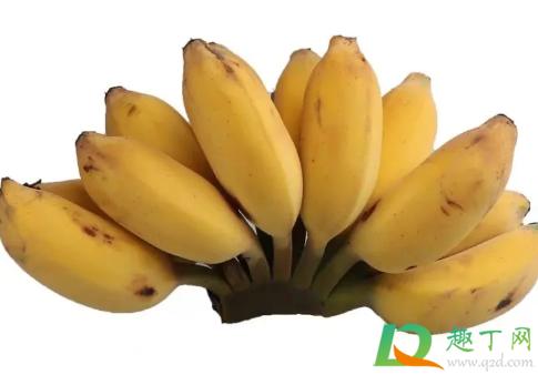 苹果蕉和小米蕉哪个好吃3
