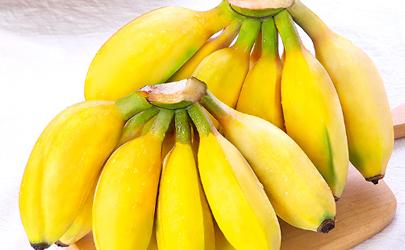 苹果蕉是转基因水果吗