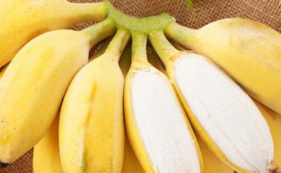苹果蕉是苹果和香蕉嫁接的吗