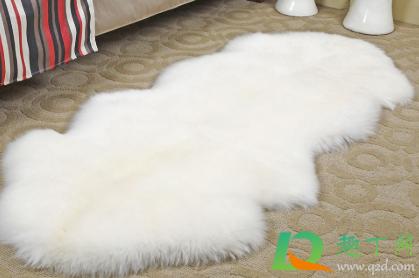 纯羊毛毛毯怎么洗2