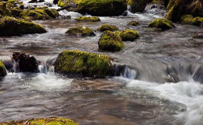矿井停产20年溪水仍是黄褐色怎么回事