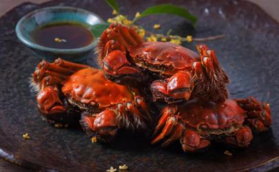 螃蟹送人送多少合适