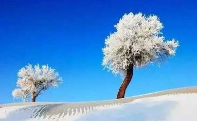2020年冬天会有大雪吗