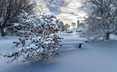 2020年冬季会有超级寒潮吗