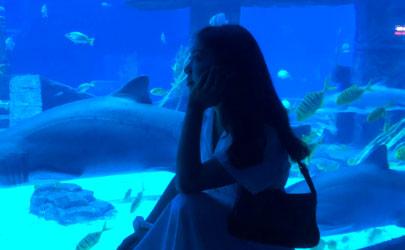 去海洋馆玩怎么拍告别游客照