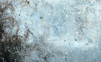 墙纸发霉是质量问题吗