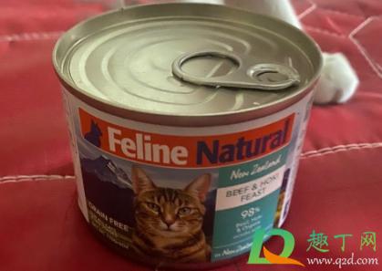 猫除了猫罐头什么都不吃怎么办1