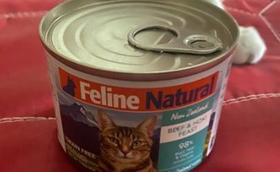 猫除了猫罐头什么都不吃怎么办