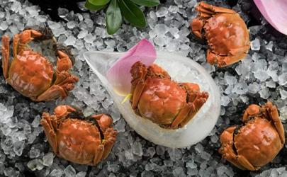螃蟹吐沙要吐多久