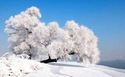 2020冬天一九从哪一天开始