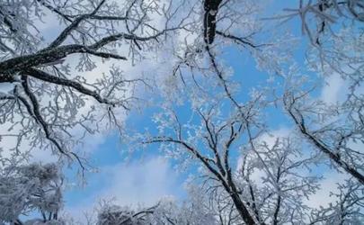 今年冬天降雪量大吗2020