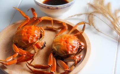 螃蟹只有触角动还是活的吗