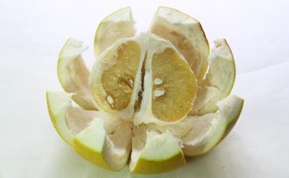 柚子皮泡茶能去口臭吗