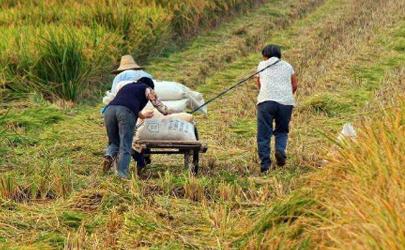 务农时用毛巾缠住脖子的原理
