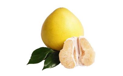柚子在爱情里代表什么意思