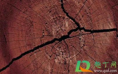 木家具开裂用什么修复1