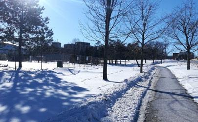 2020-2021冬天下雪的时候多不多
