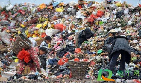 2021年起全面禁止進口洋垃圾3