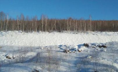 冬天雪多對莊稼好嗎