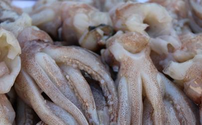 所有的鱿鱼都是用甲醛泡过吗