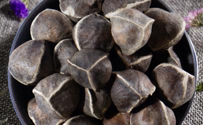 吃辣木籽能提高性功能吗