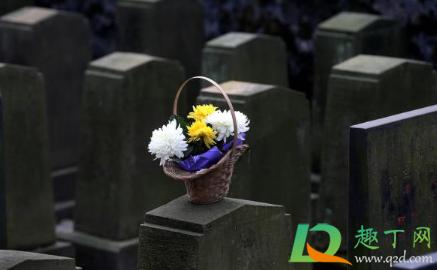 2021清明节给去世的人上坟贡品摆单数双数1