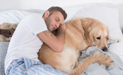 打呼噜的人睡眠质量好吗