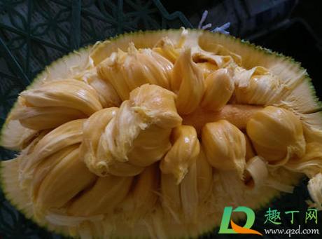 菠萝蜜弄手上都是胶怎么办插图2