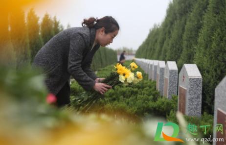 深圳的墓地可以烧纸吗插图