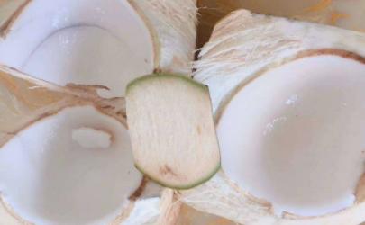 去皮椰子常温保存还是冷藏