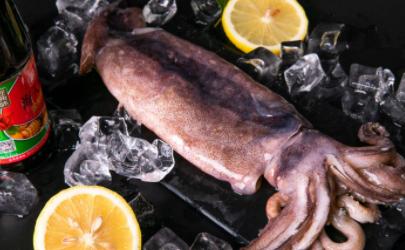 鱿鱼保鲜需要加水加冰吗