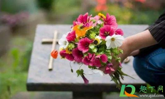 清明扫墓鲜花一盆还是二盆插图2