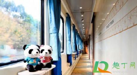 熊猫专列是哪里到哪里插图
