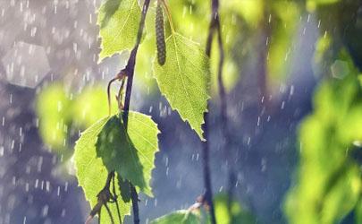 2021年五月份雨水多吗