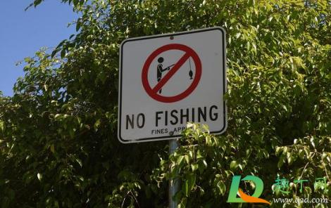 自然河道禁止钓鱼合法吗1