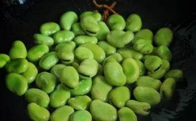 蚕豆能五月份种植吗
